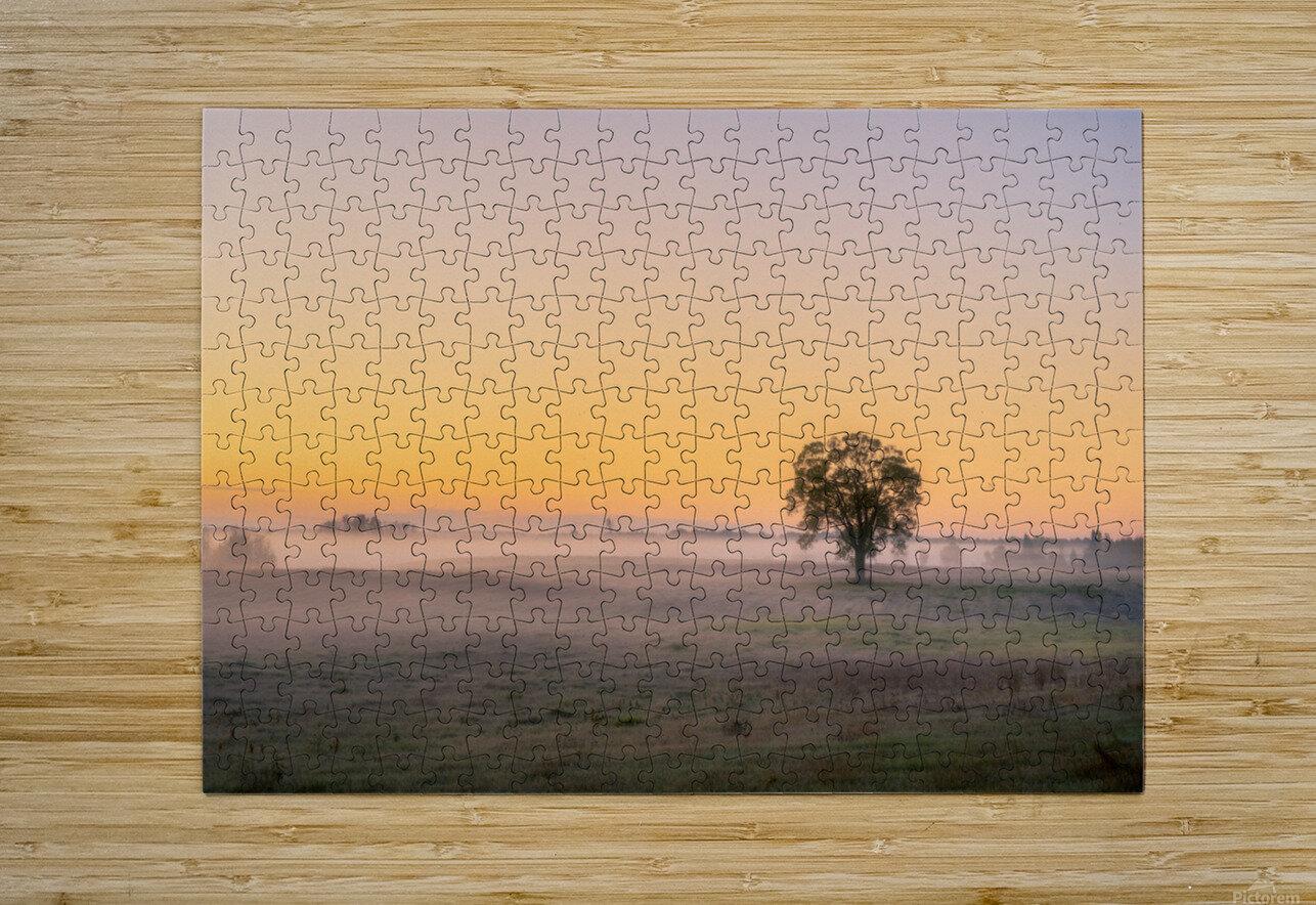 Moring Fog  HD Metal print with Floating Frame on Back