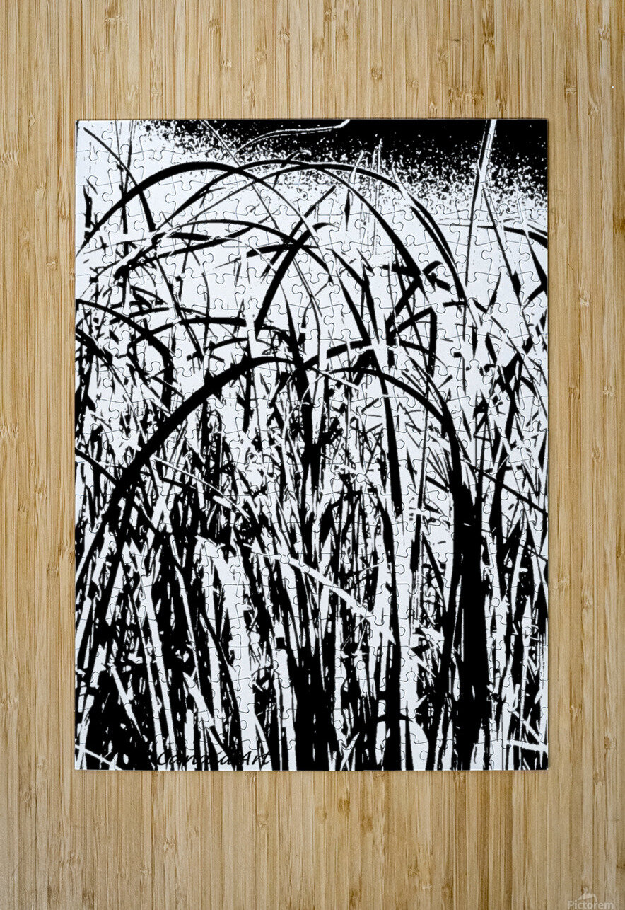 Black & White Nature Texture  HD Metal print with Floating Frame on Back