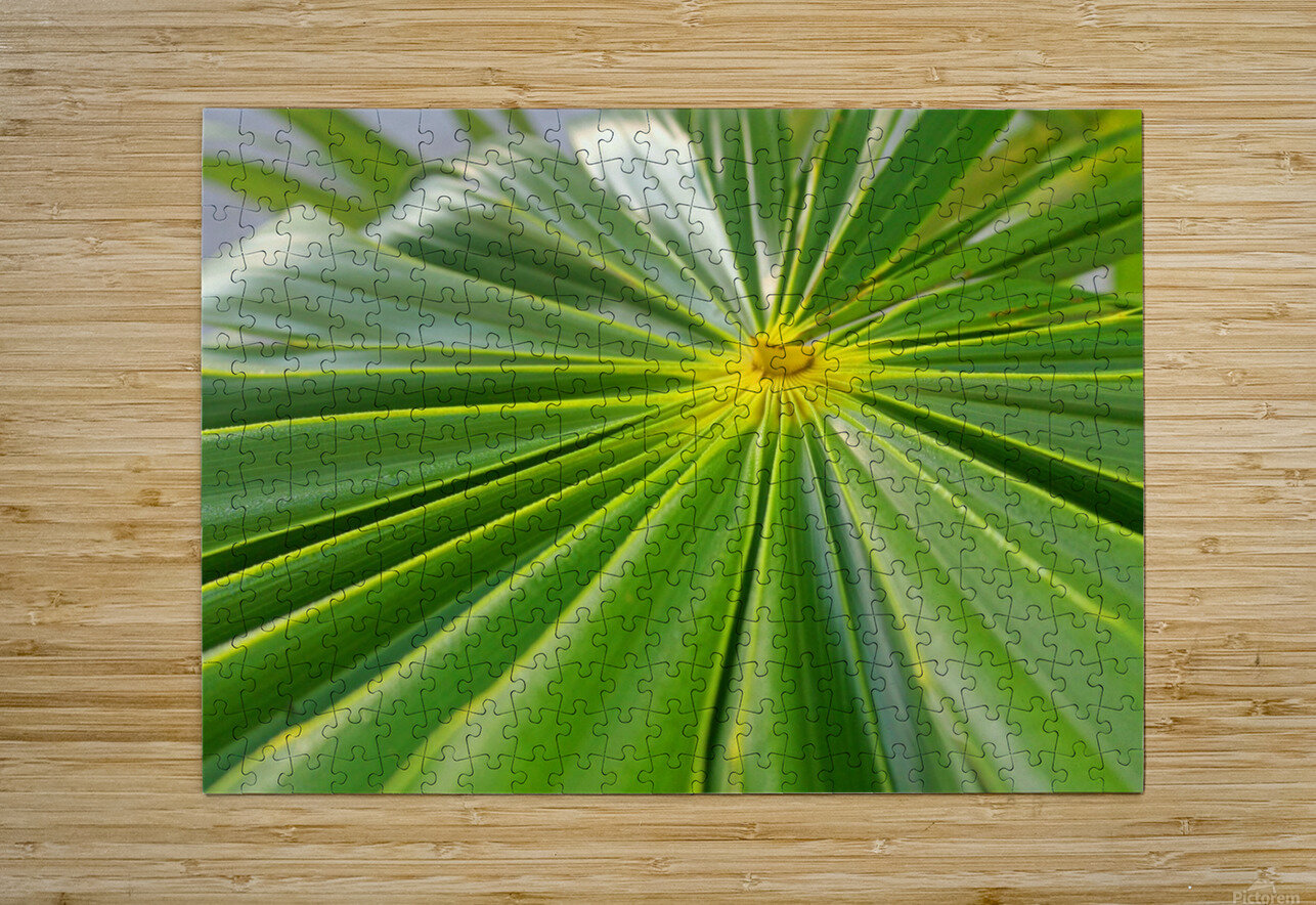 Beautiful Green  HD Metal print with Floating Frame on Back