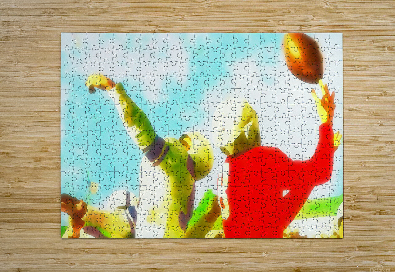 Vintage Football Print_Touchdown Catch Art Print  HD Metal print with Floating Frame on Back