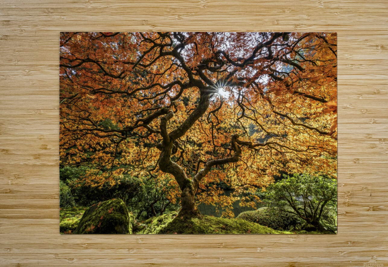 LIFE  H2  HD Metal print with Floating Frame on Back