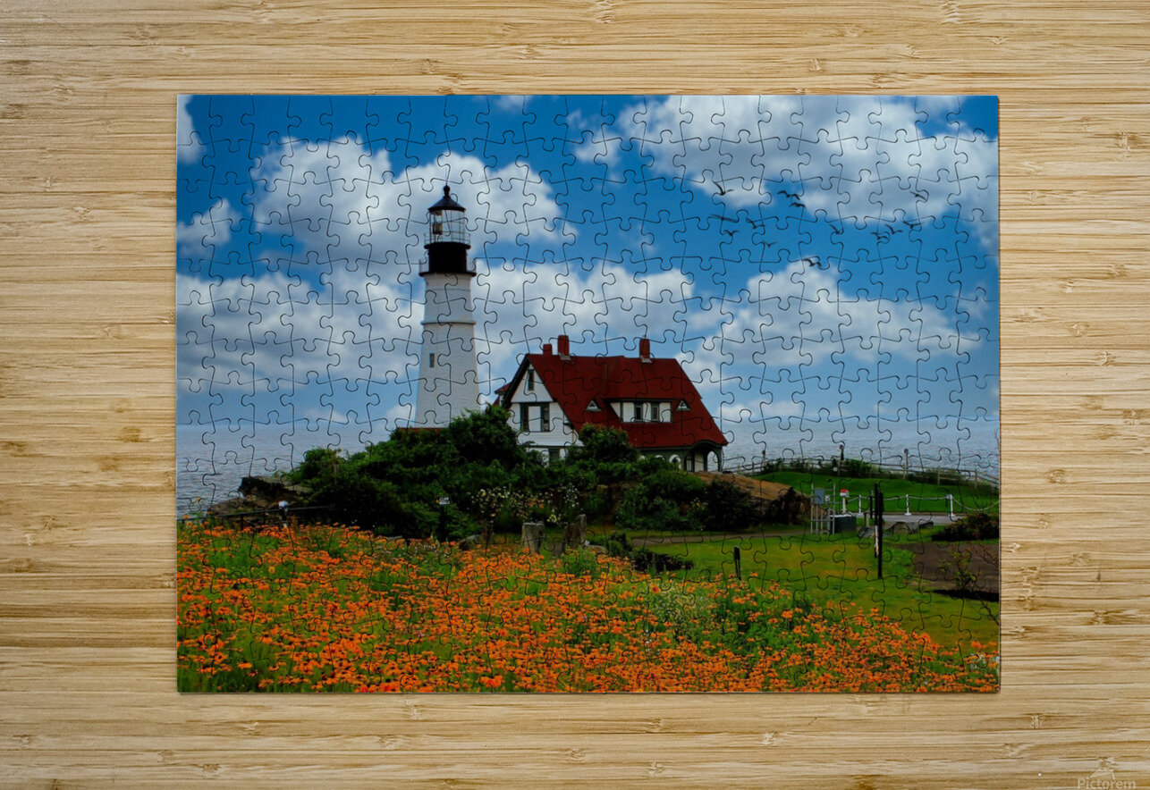 Maine Lighthouse  HD Metal print with Floating Frame on Back