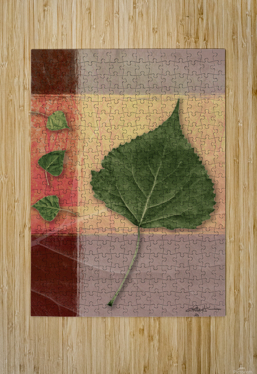 Leaves on Peach & Salmon 2x3  HD Metal print with Floating Frame on Back