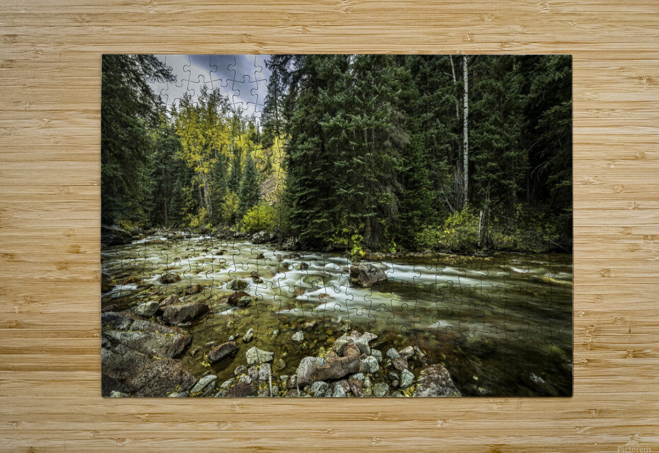 Rocky Mountain Forest  HD Metal print with Floating Frame on Back