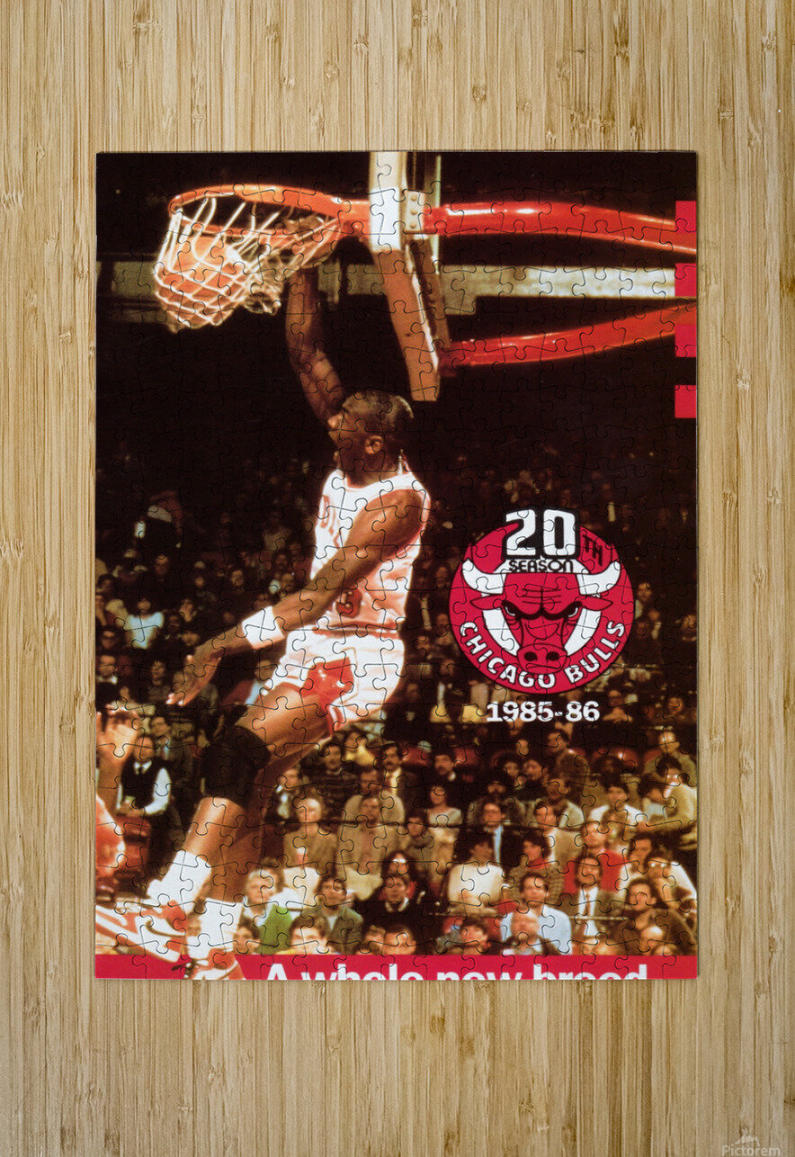 Michael Jordan Dunk  HD Metal print with Floating Frame on Back