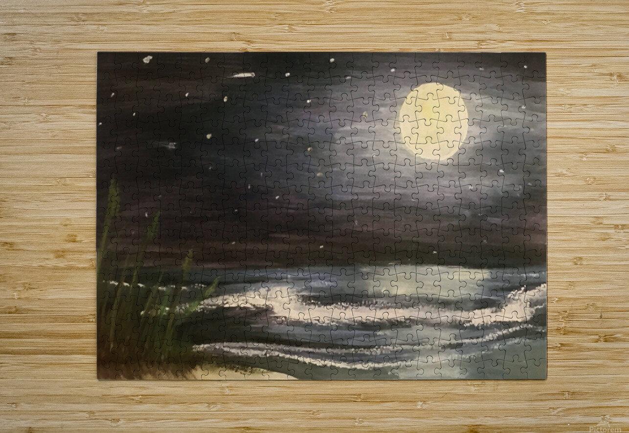 Moonlit Seascape  HD Metal print with Floating Frame on Back