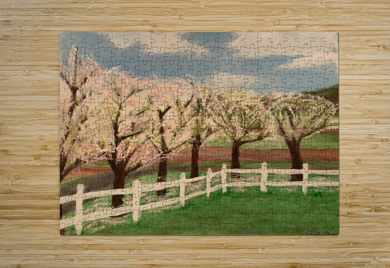 Trees In Bloom  HD Metal print with Floating Frame on Back