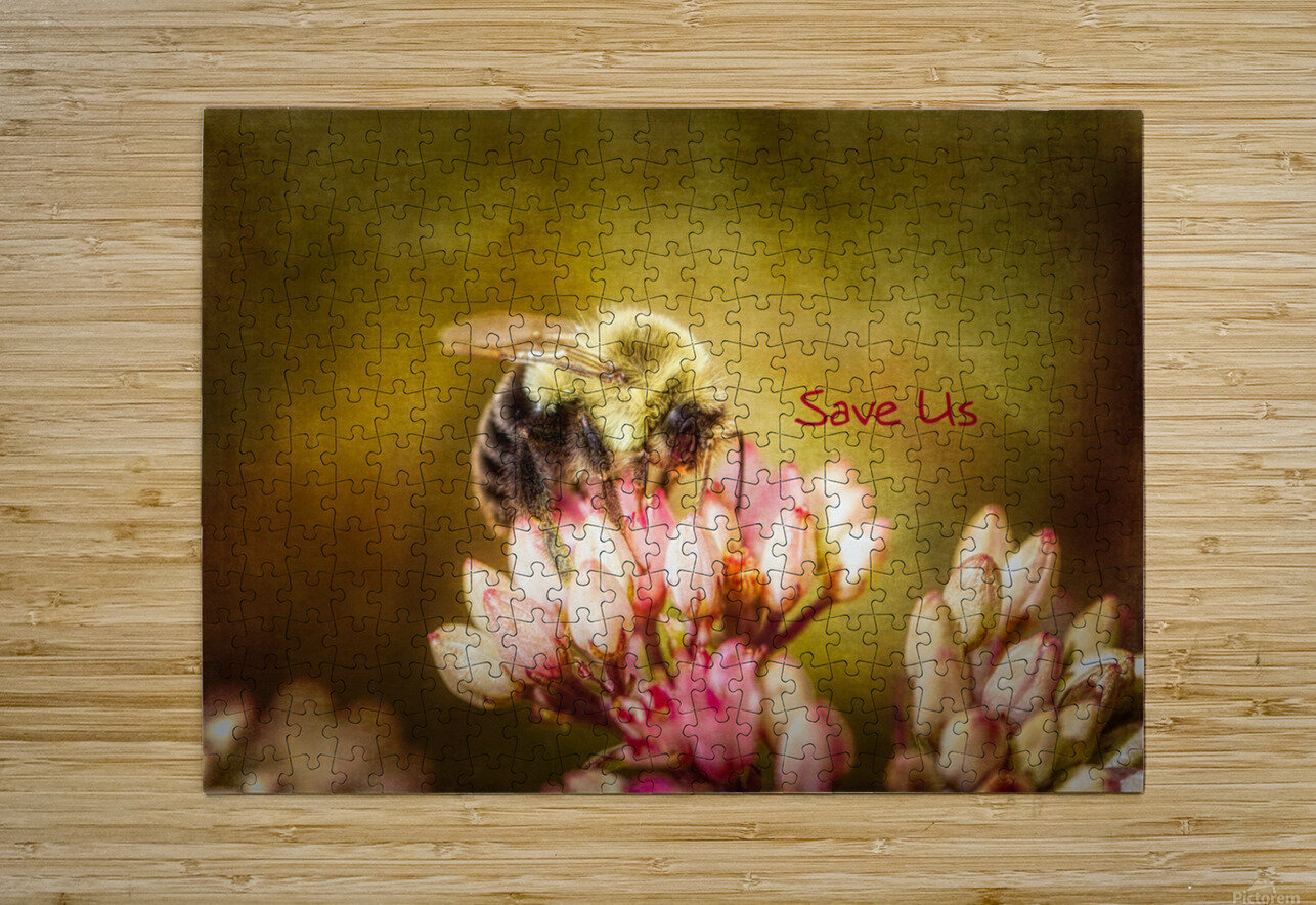 Save Us  HD Metal print with Floating Frame on Back