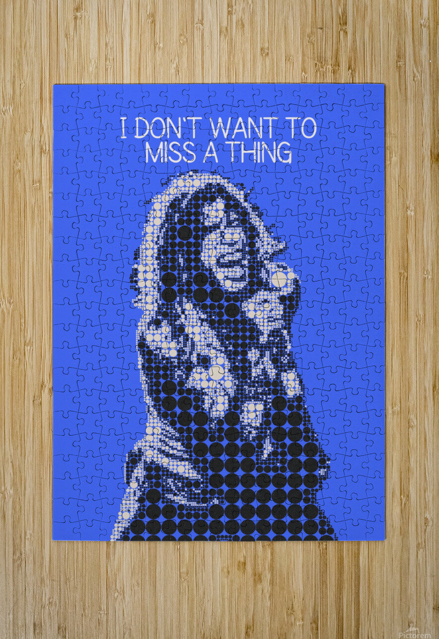 I Dont Want to Miss a Thing   Steven Tyler  HD Metal print with Floating Frame on Back
