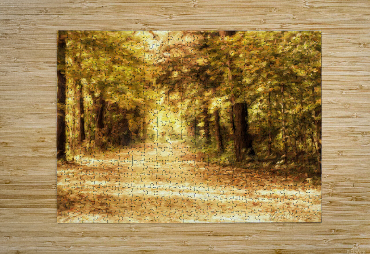 Autumn Path 2  HD Metal print with Floating Frame on Back