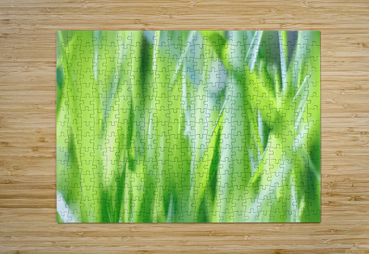 Blueish Green Grass  HD Metal print with Floating Frame on Back