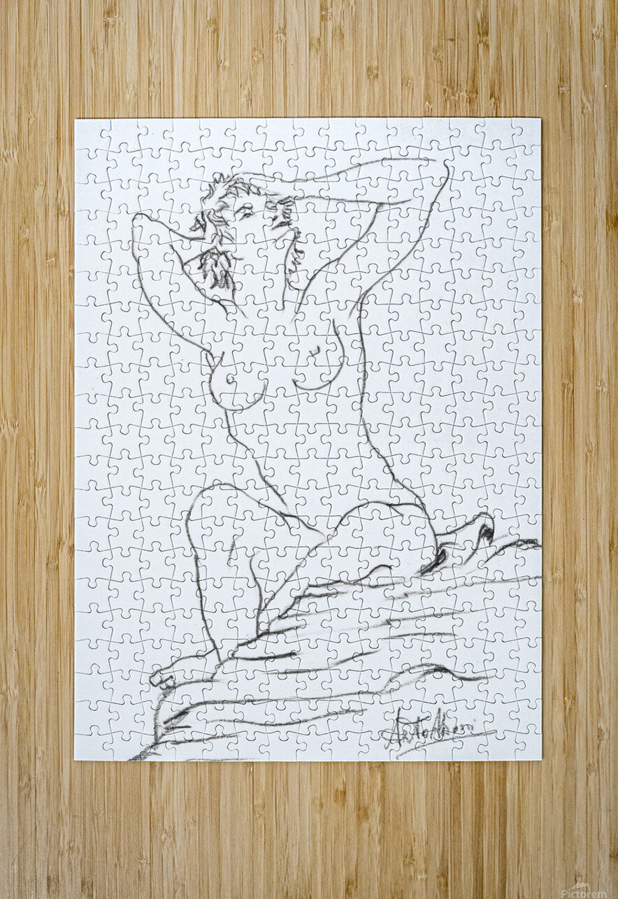 Anna_ pencil  HD Metal print with Floating Frame on Back