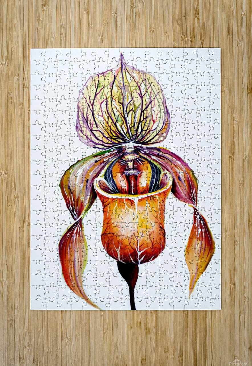 Orchid Venus Slipper  HD Metal print with Floating Frame on Back