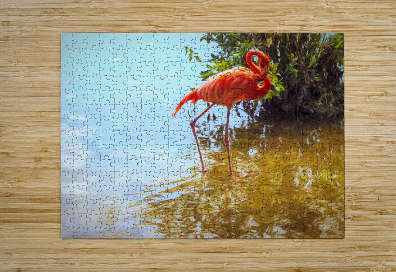 Pink Flamingo Wading In Water  HD Metal print with Floating Frame on Back