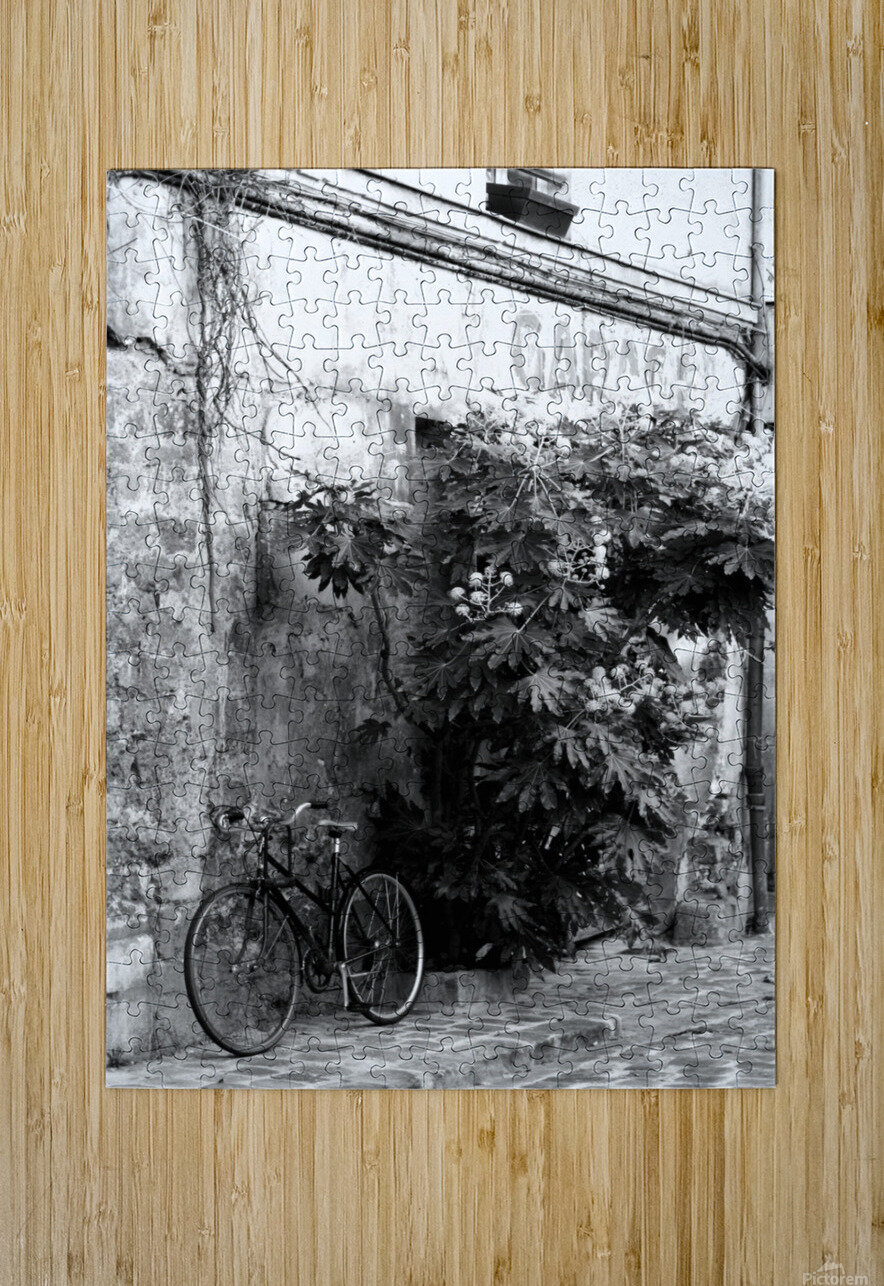 Bike in Passage  HD Metal print with Floating Frame on Back
