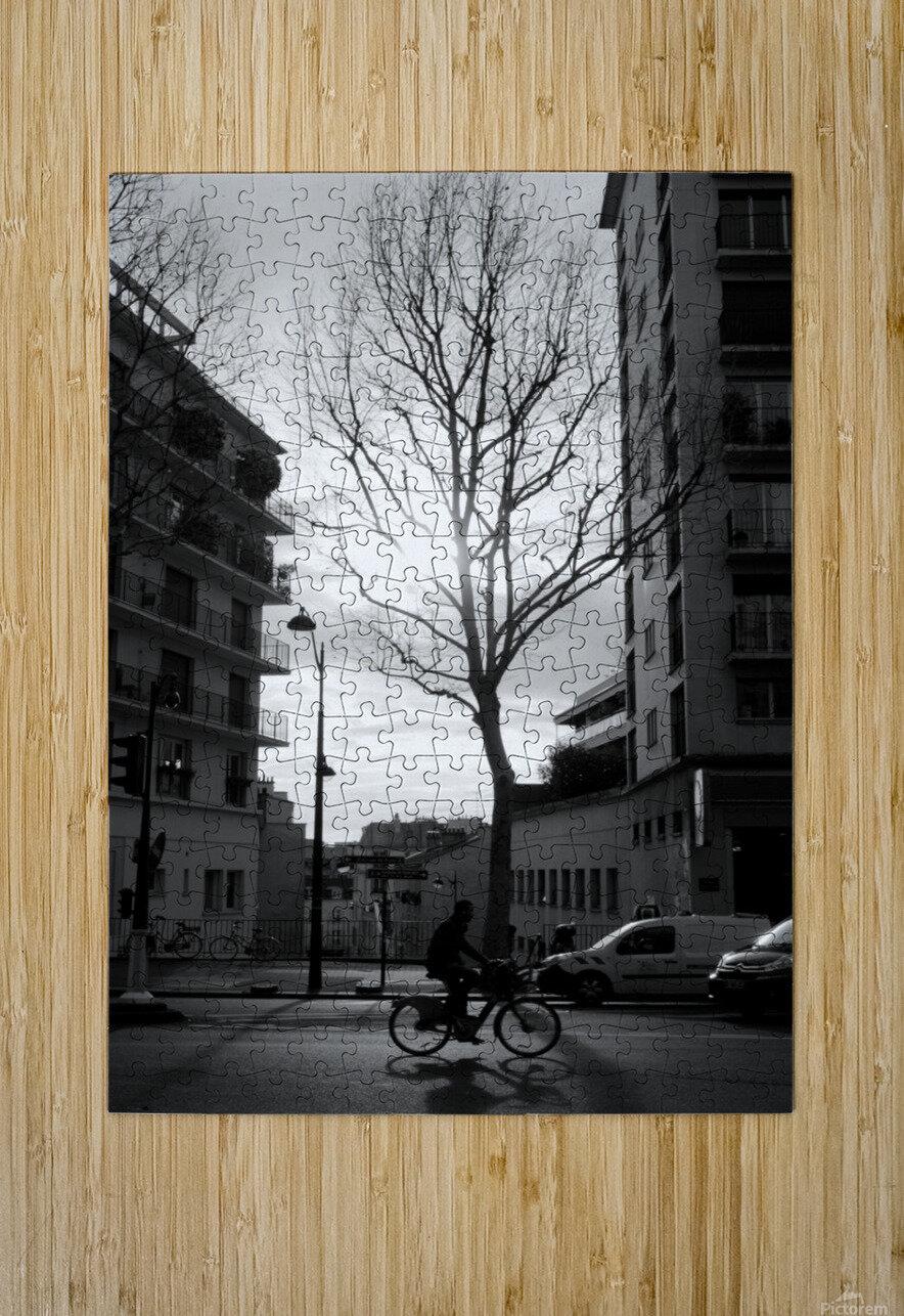 Un Velo dans Belleville  HD Metal print with Floating Frame on Back