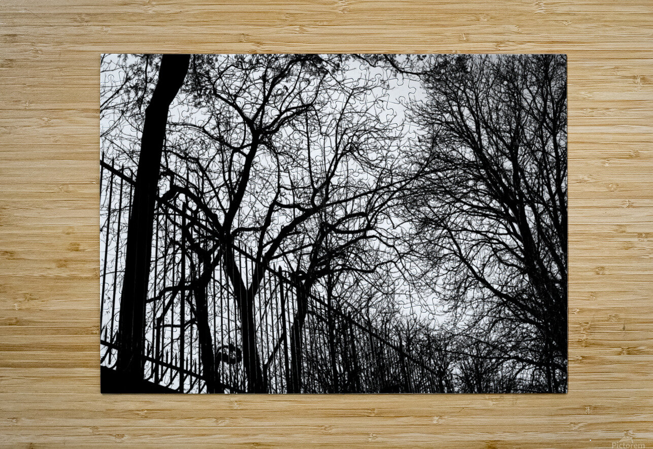 Pere Lachaise  HD Metal print with Floating Frame on Back