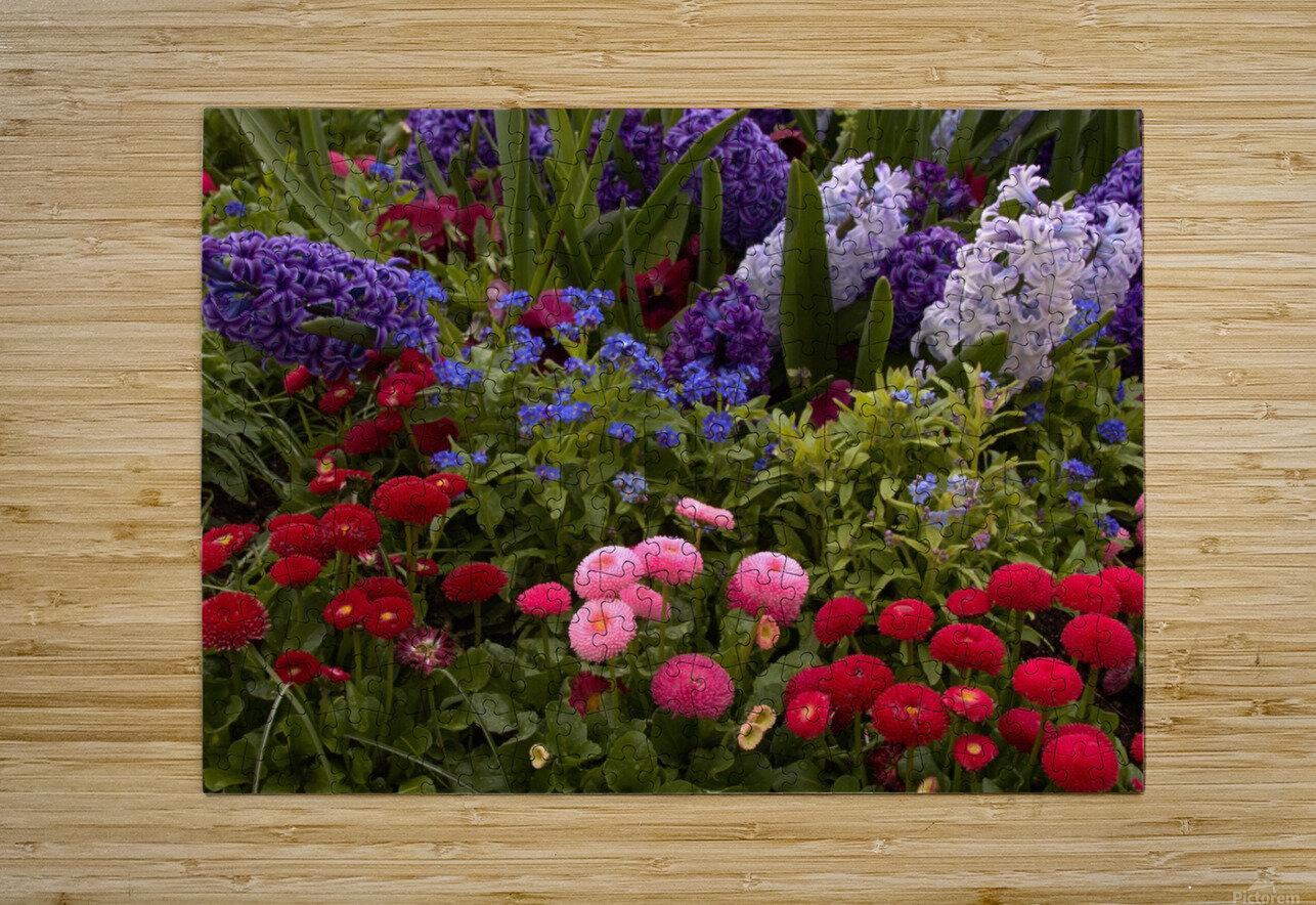 Spring Garden   HD Metal print with Floating Frame on Back