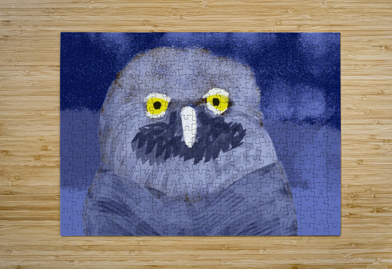 snow owl  HD Metal print with Floating Frame on Back