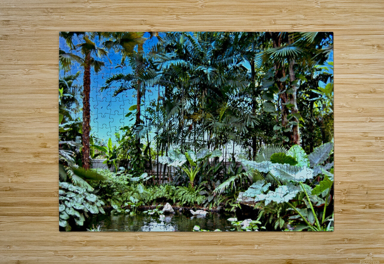 P25 - Small Forest  HD Metal print with Floating Frame on Back
