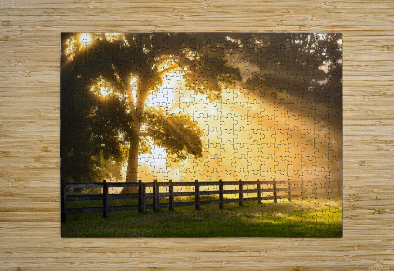 Break of Dawn  HD Metal print with Floating Frame on Back