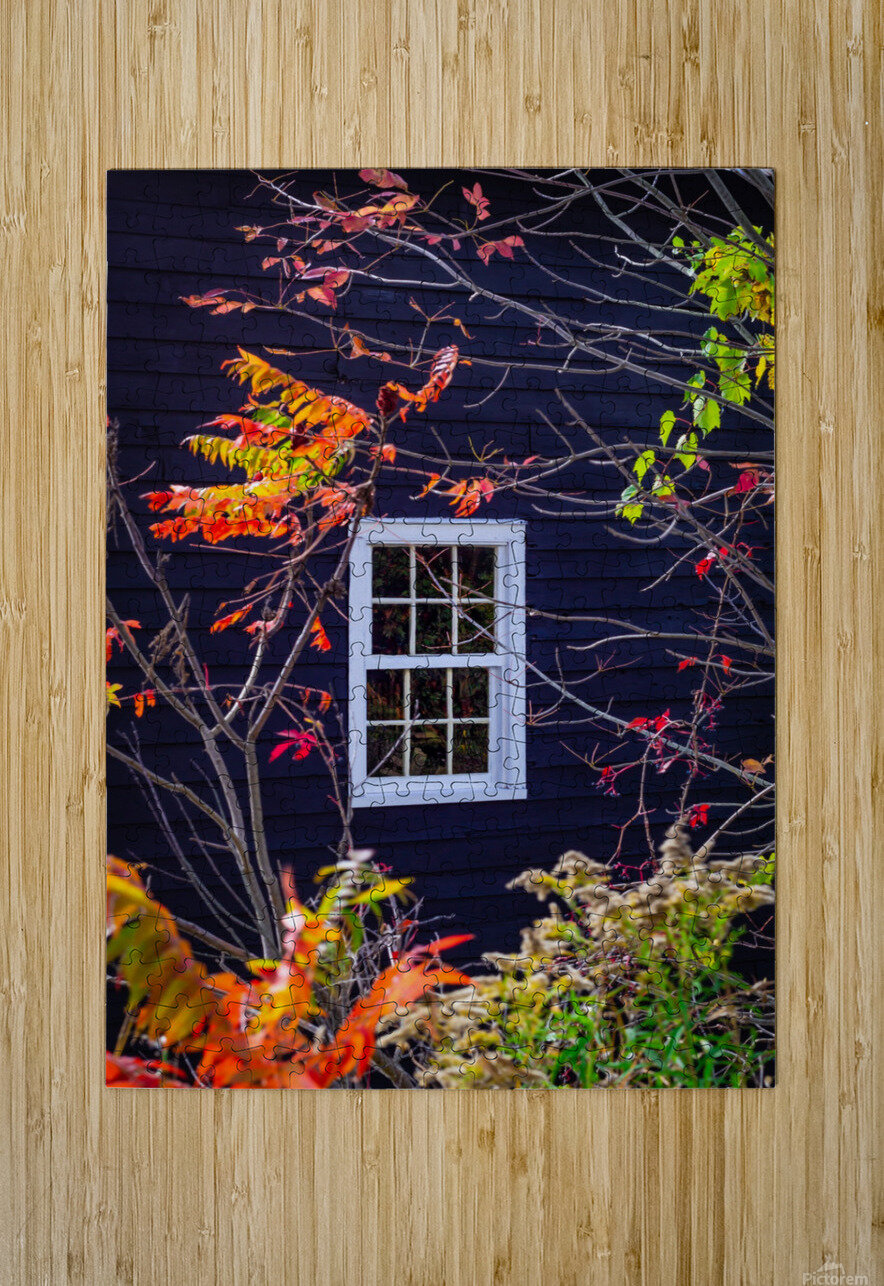 Autumn Window  HD Metal print with Floating Frame on Back