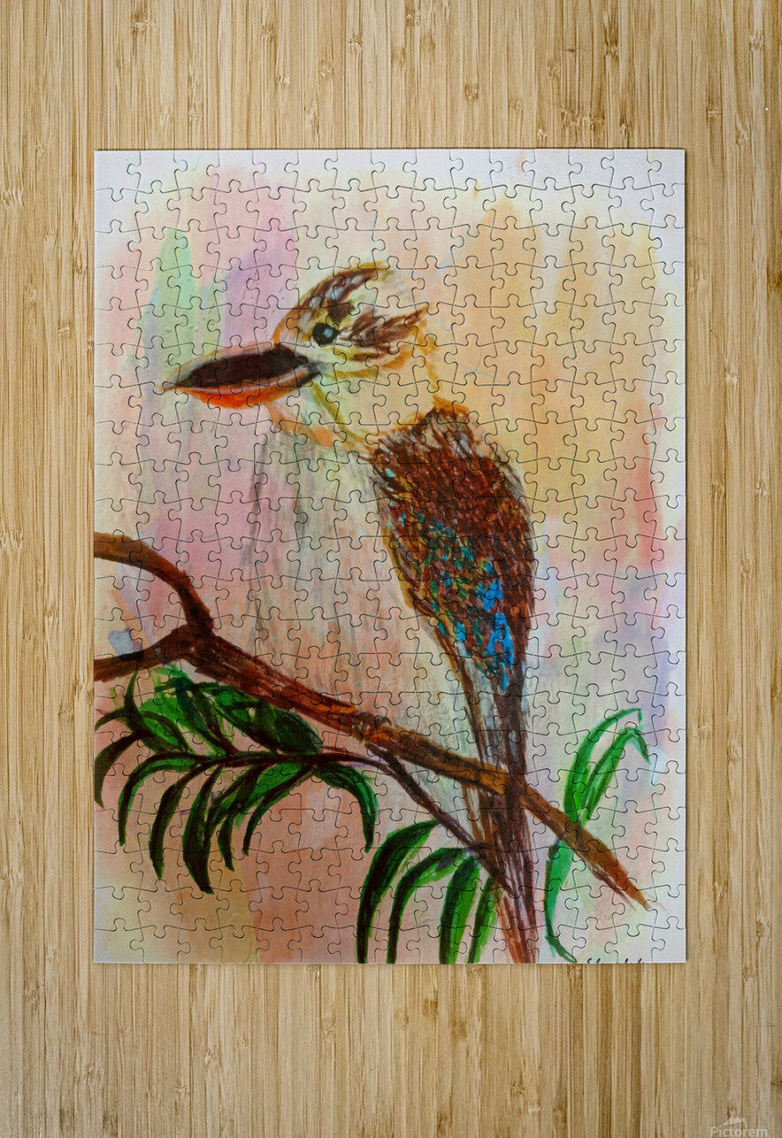 Kookaburra Bird   HD Metal print with Floating Frame on Back
