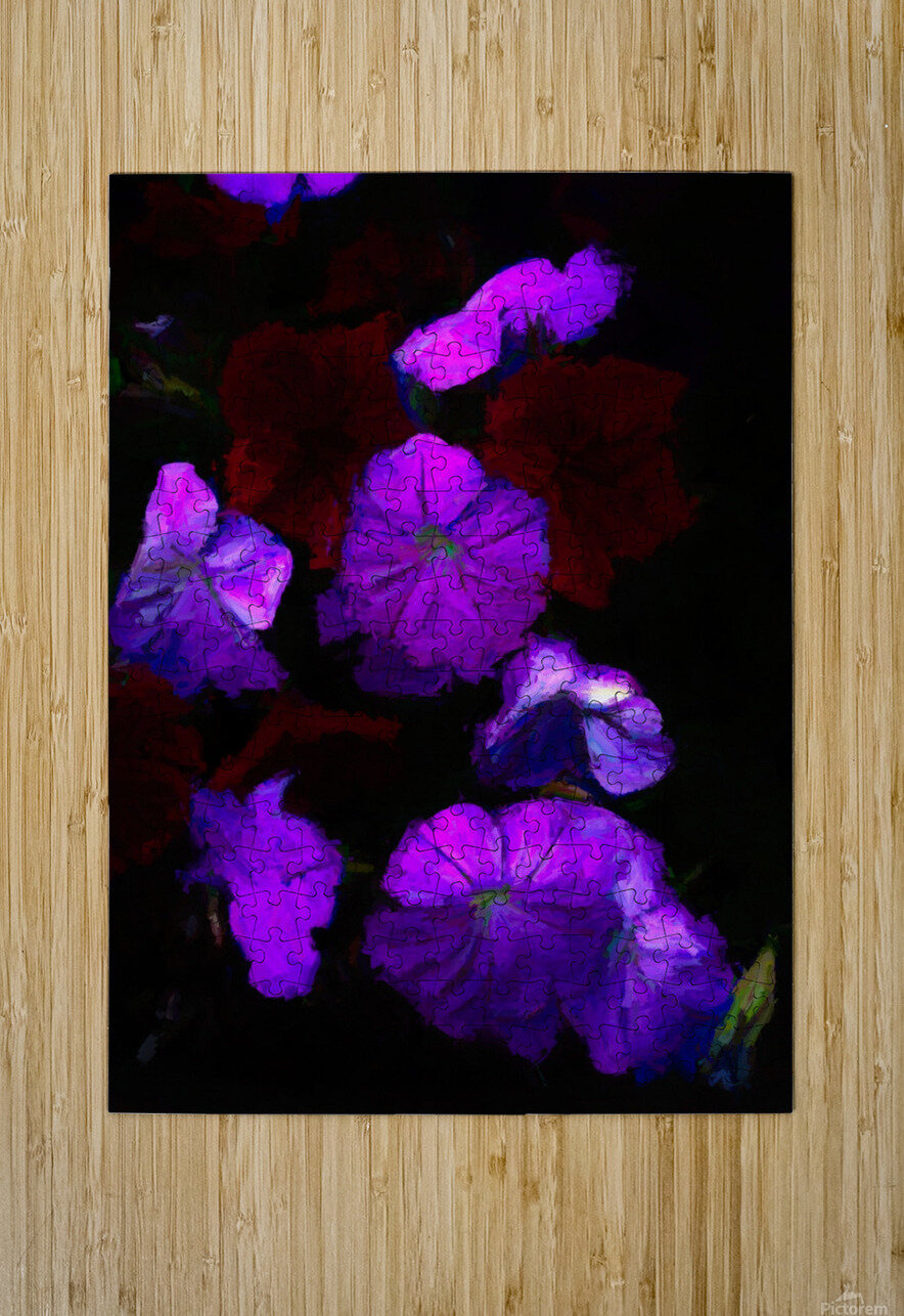 Evening Flowers  HD Metal print with Floating Frame on Back