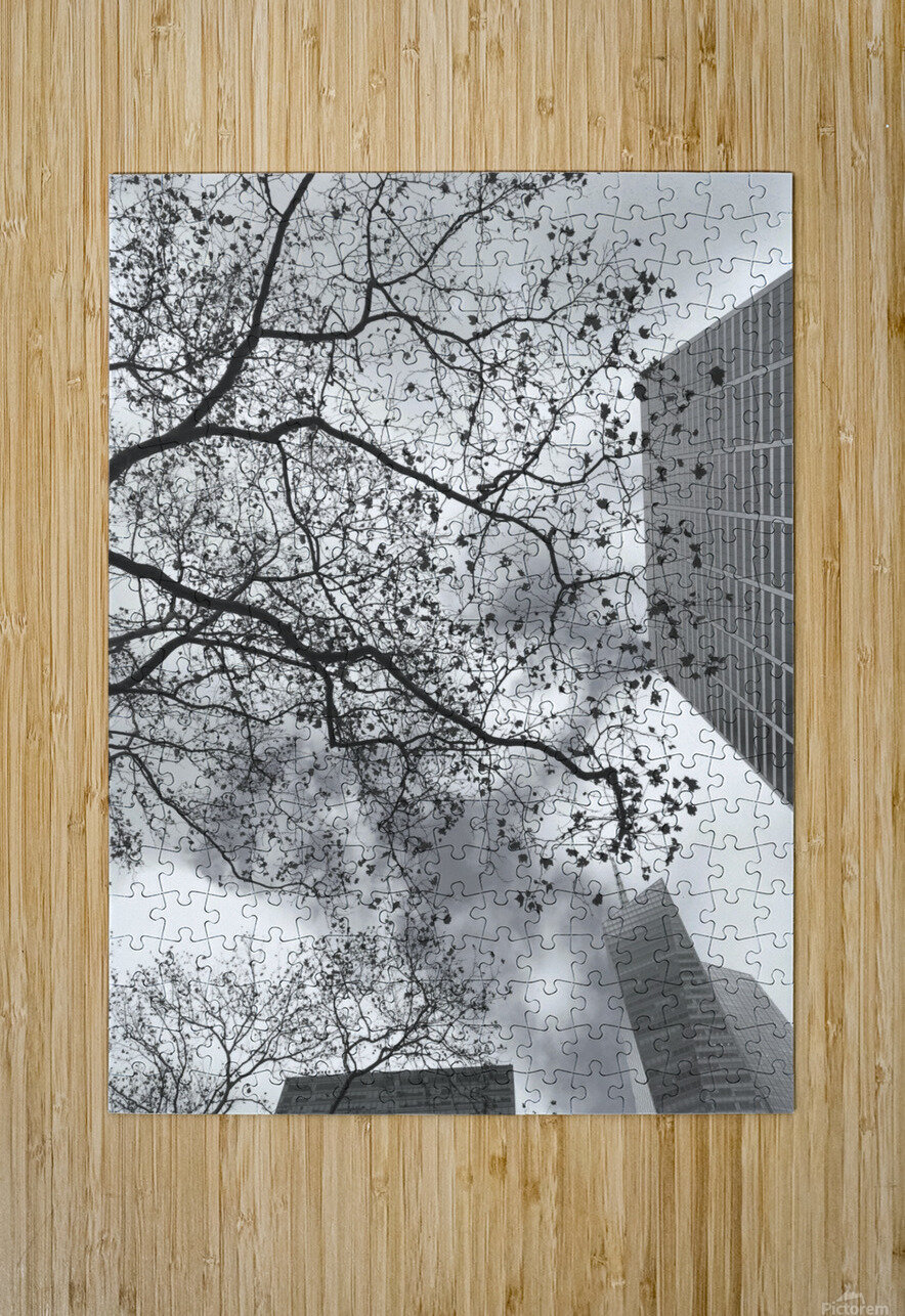 NYC Placement  HD Metal print with Floating Frame on Back