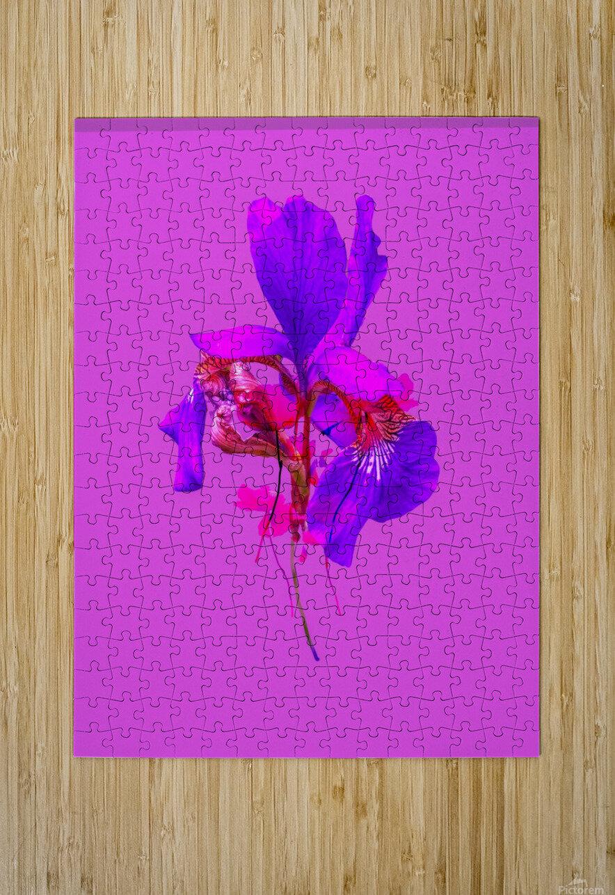 2AA2B863 A8C5 4C62 A0DE DBF9CE5B7B4E  HD Metal print with Floating Frame on Back