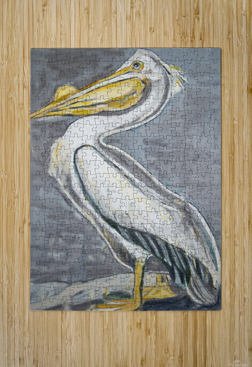 Louisiana White Pelican with Metallic Silver  HD Metal print with Floating Frame on Back