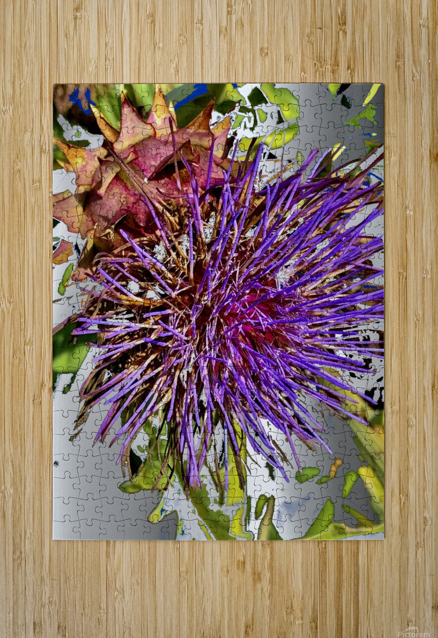 Thistle 200827  HD Metal print with Floating Frame on Back