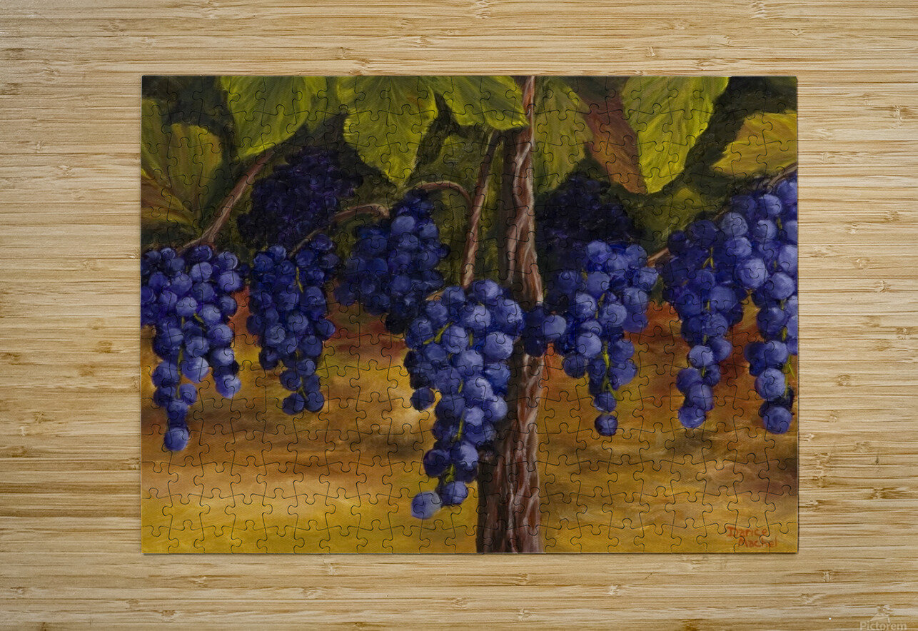 On The Vine  HD Metal print with Floating Frame on Back