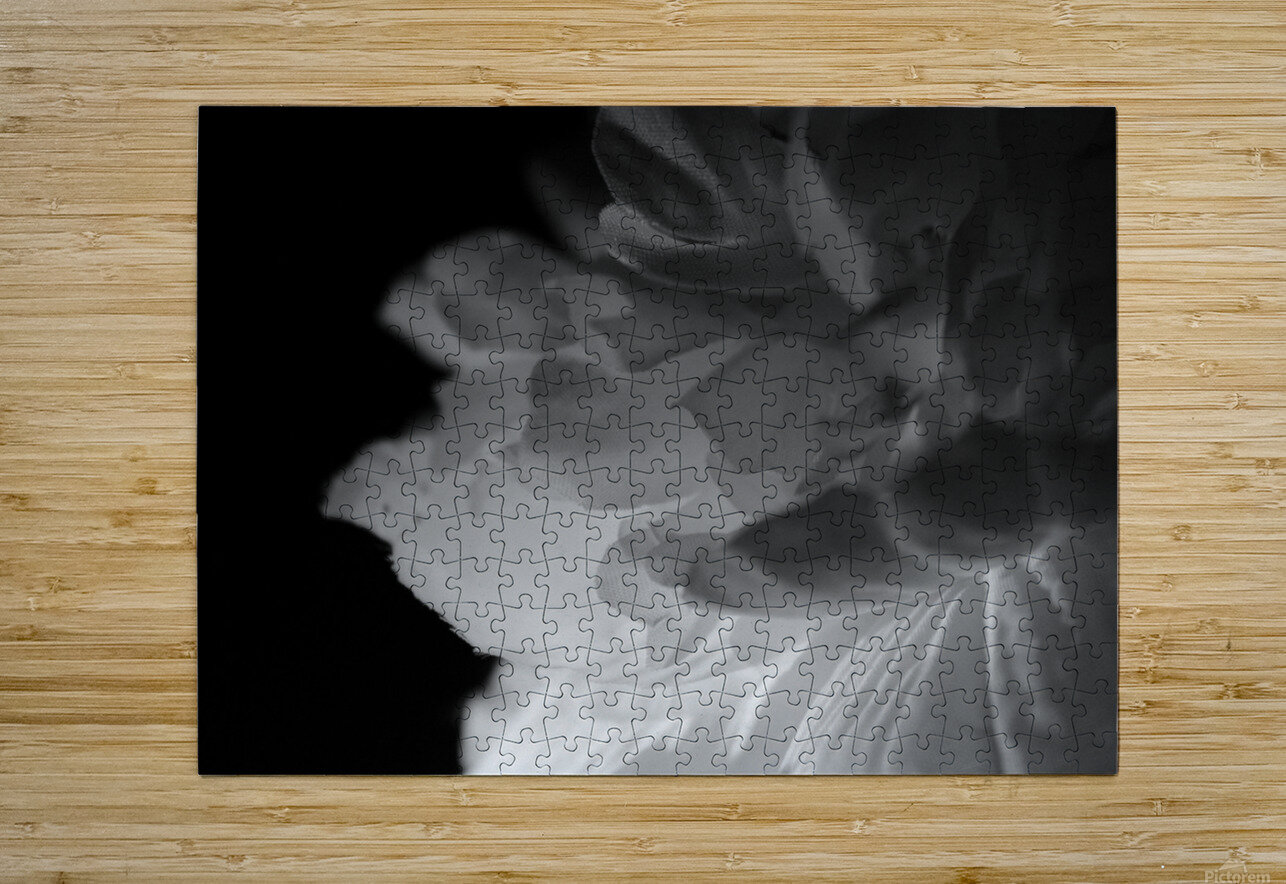 Shadow  HD Metal print with Floating Frame on Back