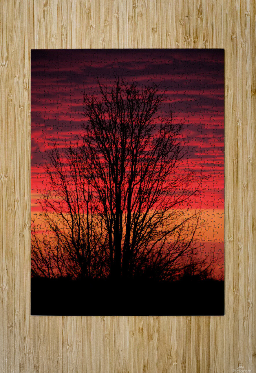Missouri Sunset part 1  HD Metal print with Floating Frame on Back