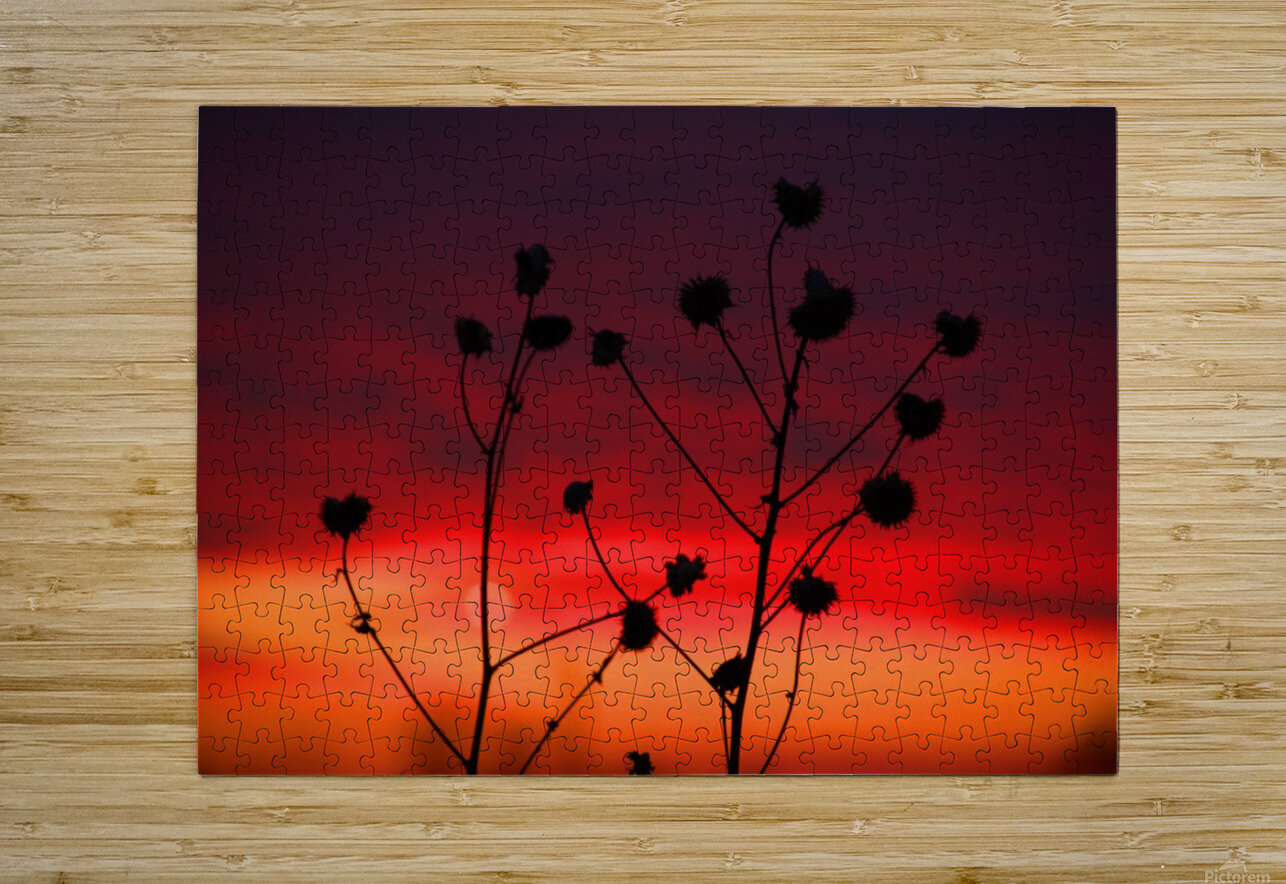 Missouri Sunset part 2  HD Metal print with Floating Frame on Back