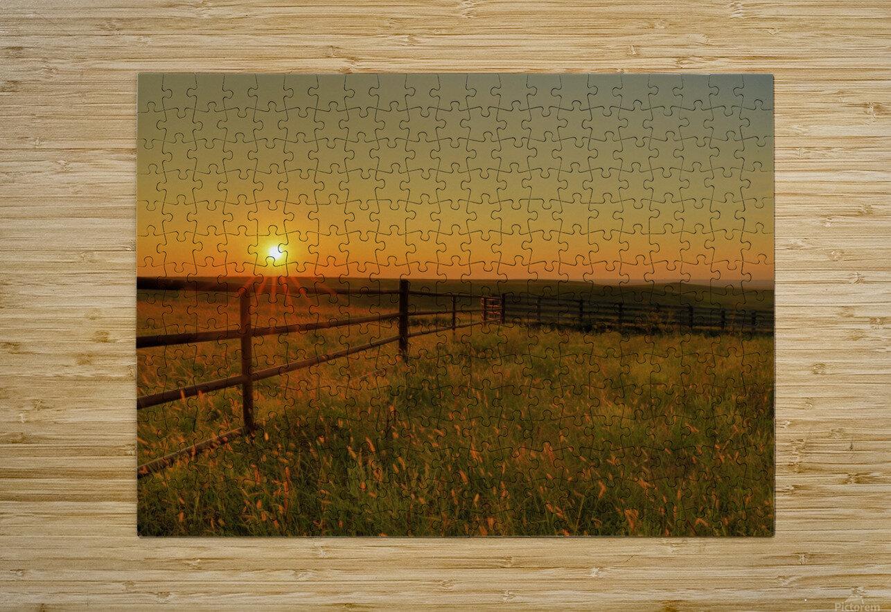 Cattle Pens Morning Sunburst  HD Metal print with Floating Frame on Back