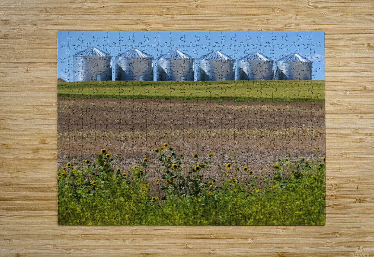 Grain Silos  HD Metal print with Floating Frame on Back