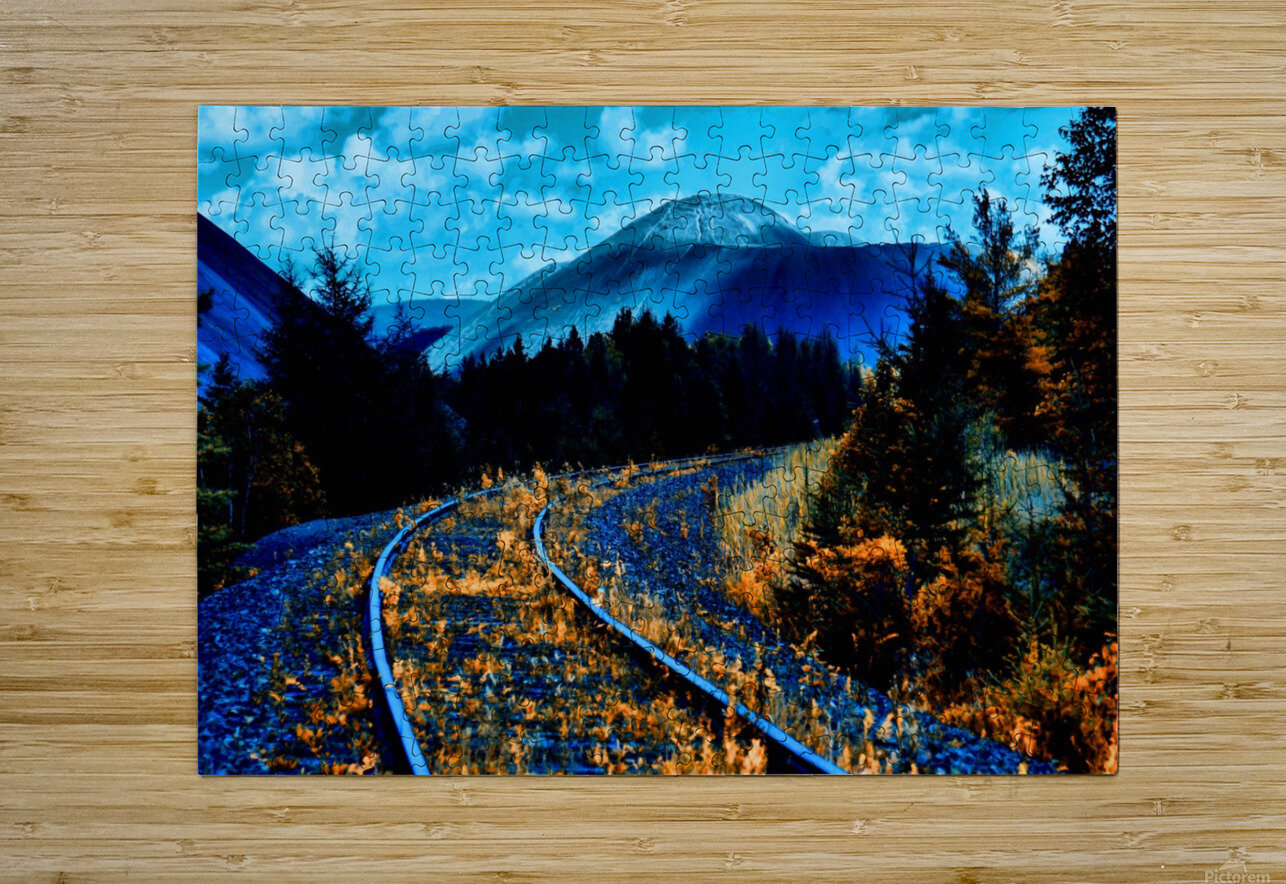 Rail   HD Metal print with Floating Frame on Back