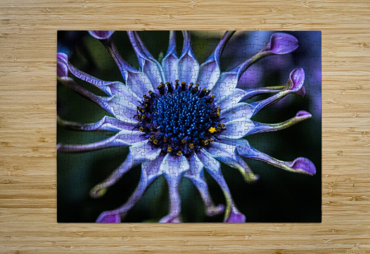 purple alien  HD Metal print with Floating Frame on Back