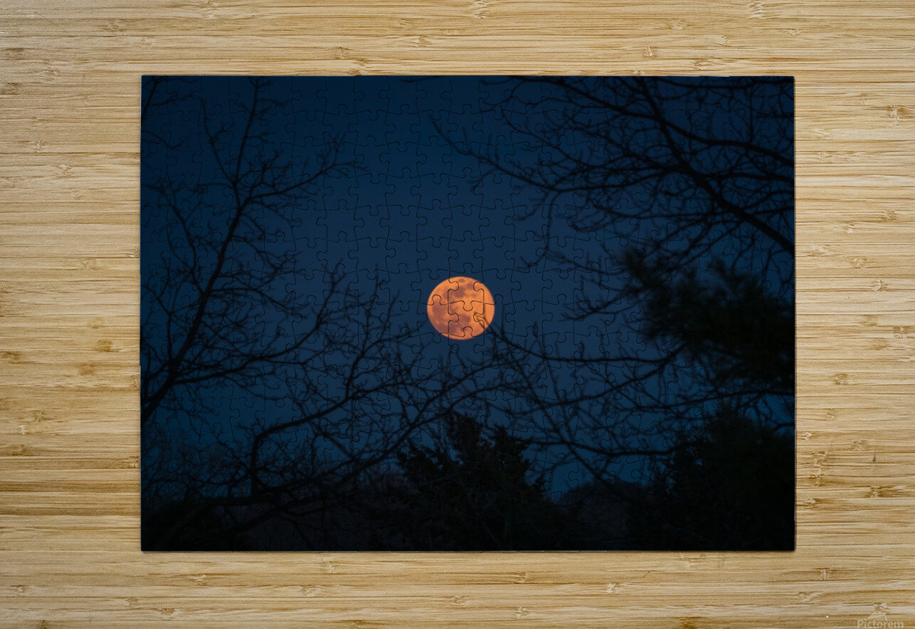 Moonrise  HD Metal print with Floating Frame on Back