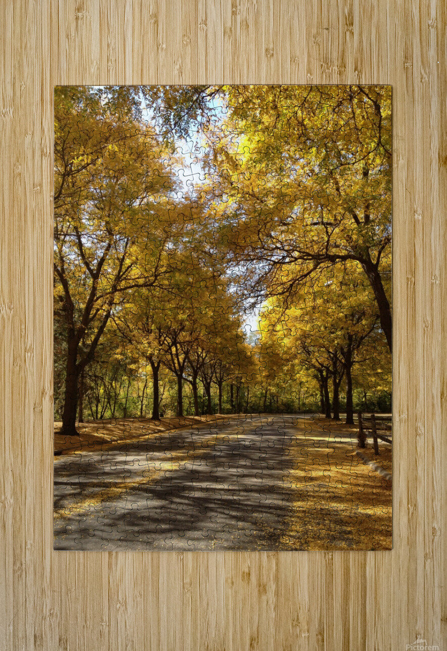 Autumn on Olivers End  HD Metal print with Floating Frame on Back