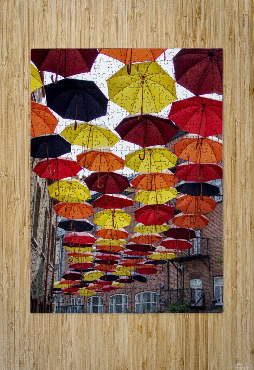 parapluies  HD Metal print with Floating Frame on Back