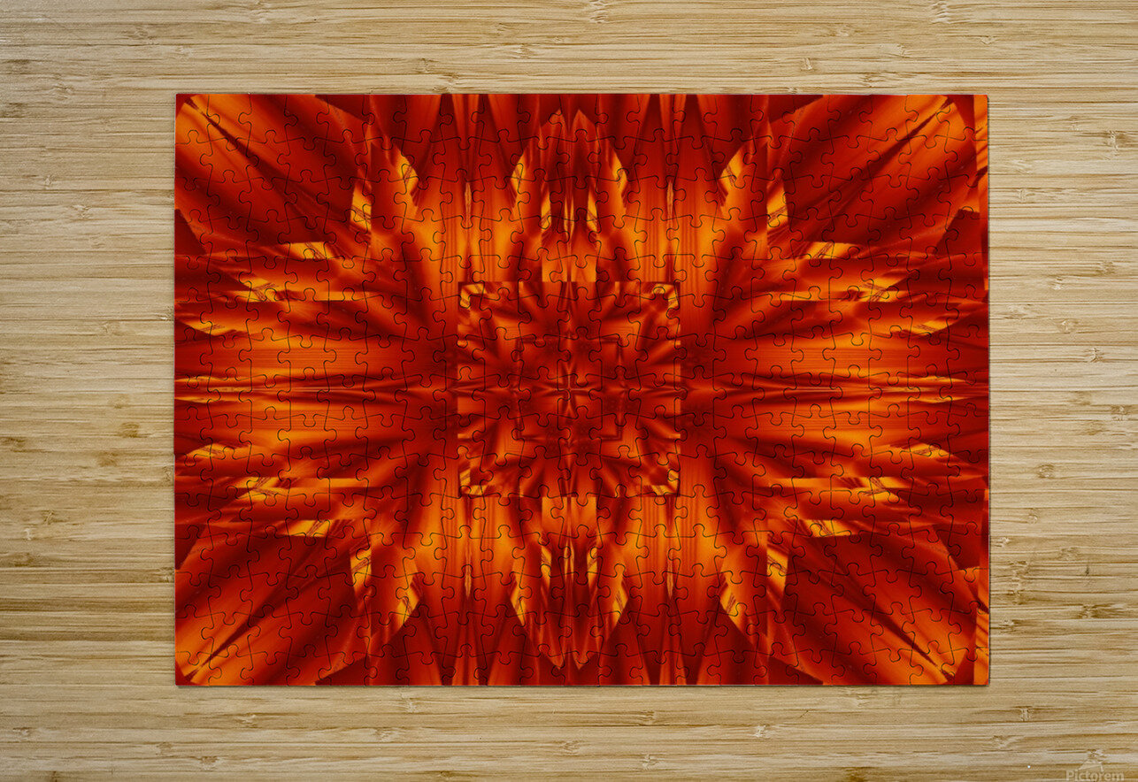 Fire Flowers 190  HD Metal print with Floating Frame on Back