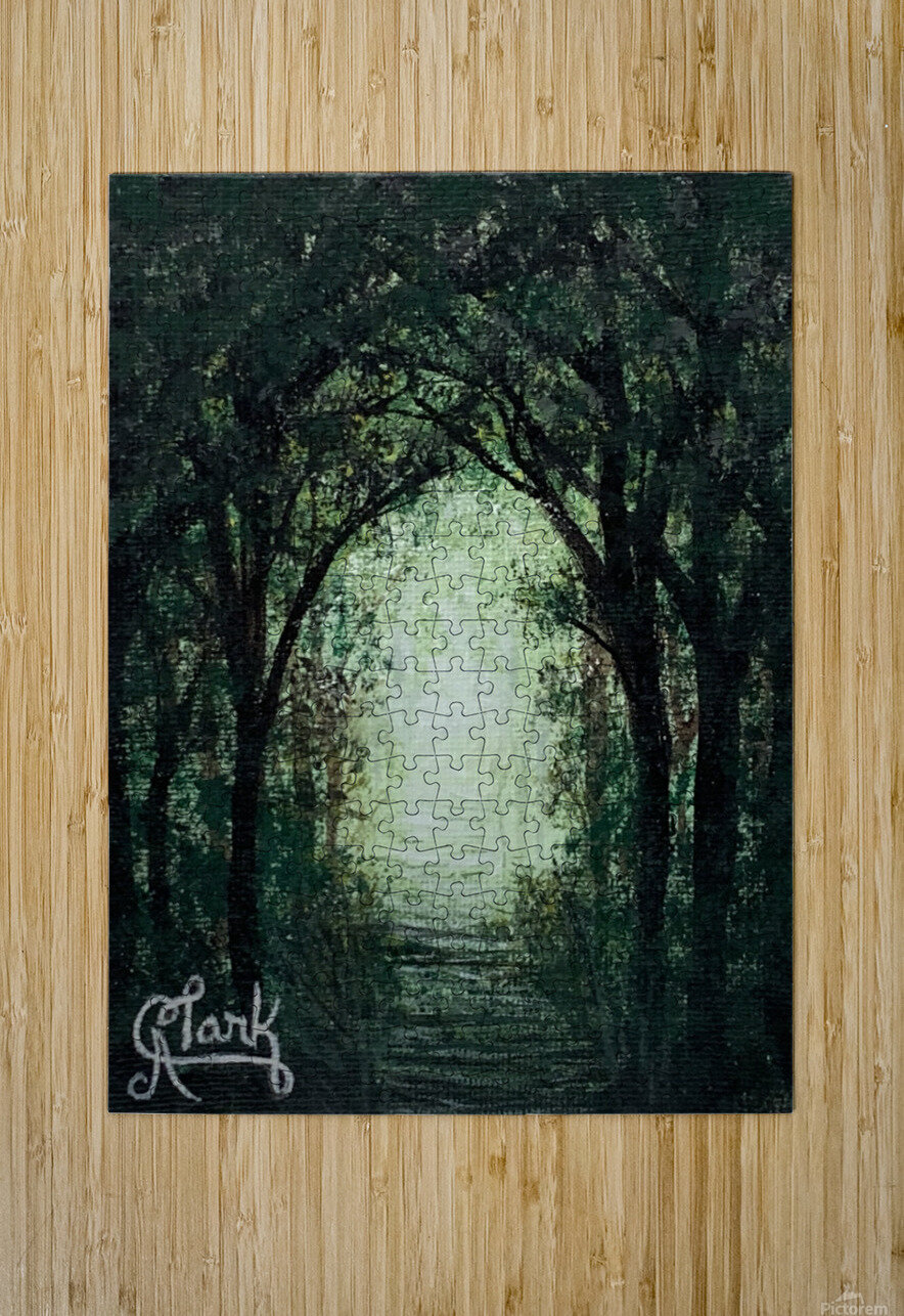 Path in the Woods  HD Metal print with Floating Frame on Back