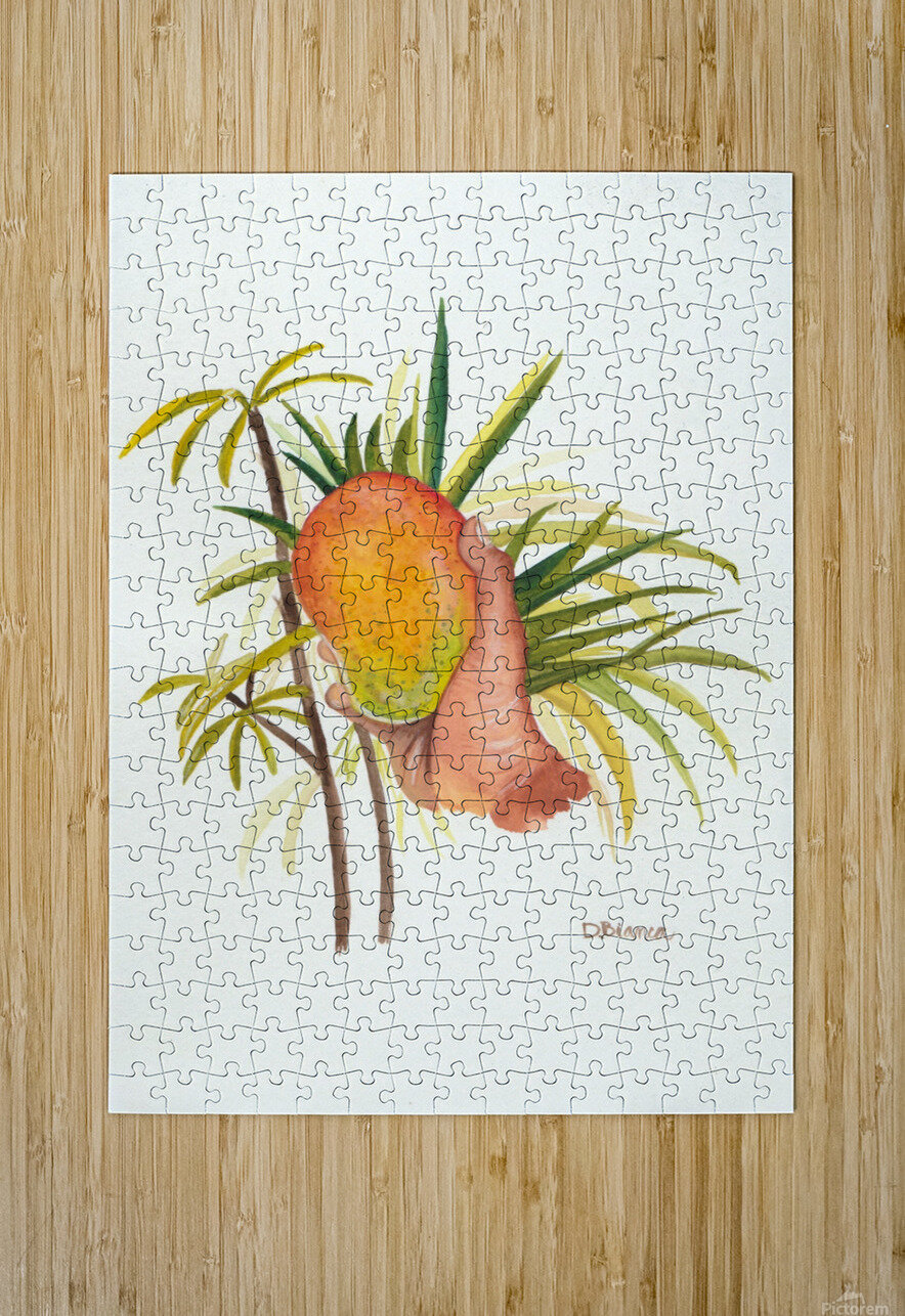 Mango  HD Metal print with Floating Frame on Back