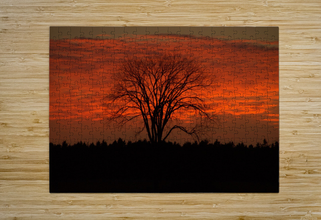 Wisconsin November Sunset Wood County  HD Metal print with Floating Frame on Back