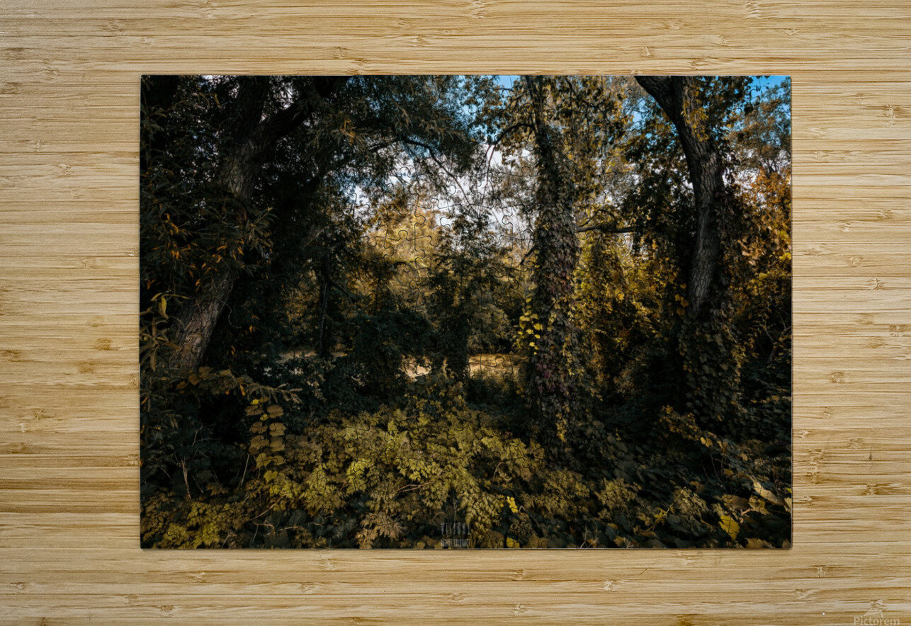 Monet style 1  HD Metal print with Floating Frame on Back