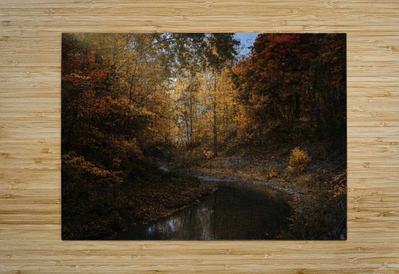 Lumiere automnale  HD Metal print with Floating Frame on Back