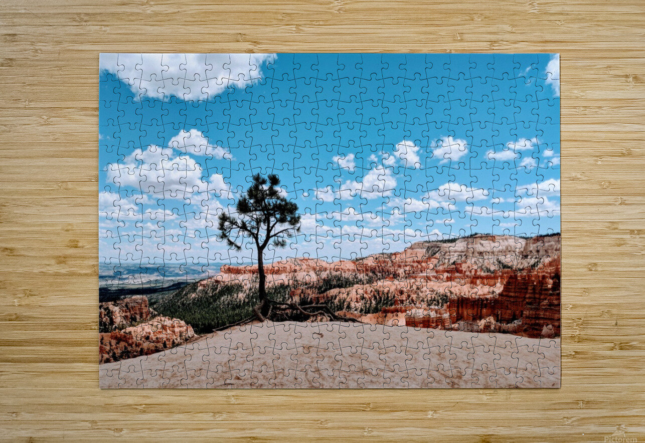 Bryce Canyon V  HD Metal print with Floating Frame on Back
